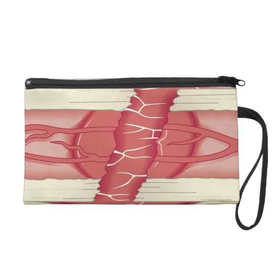 Bone Repairing Itself Wristlet Purse