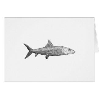 Bonefish Logo Card