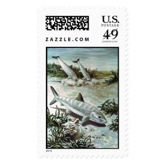 Bonefish   stamp