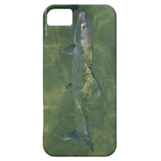 Bonefish Release iPhone 5 Covers