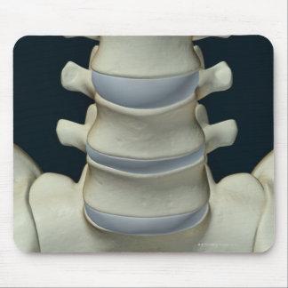 Bones of Lumbar Vertebrae 2 Mouse Pad