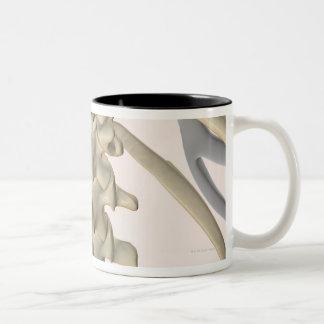 Bones of Lumbar Vertebrae 3 Two-Tone Coffee Mug