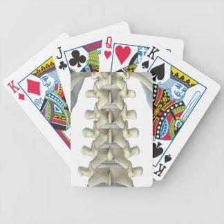 Bones of Lumbar Vertebrae Bicycle Card Deck