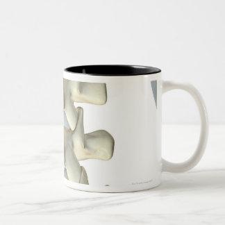 Bones of Lumbar Vertebrae Two-Tone Coffee Mug