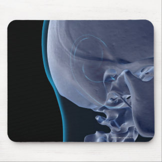 Bones of the Face 2 Mouse Pad