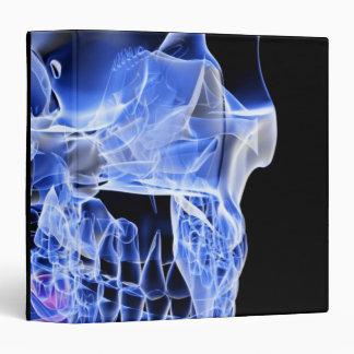 Bones of the Face Binder
