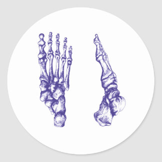Bones of the feet - blue classic round sticker