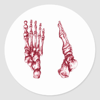 Bones of the feet - light red classic round sticker