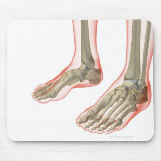 Bones of the Feet Mouse Pad