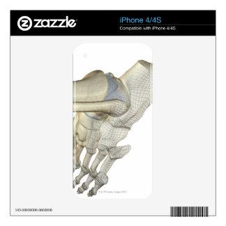 Bones of the Foot 3 iPhone 4S Skin