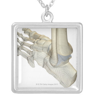 Bones of the Foot 3 Silver Plated Necklace