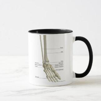 Bones of the Foot 6 Mug