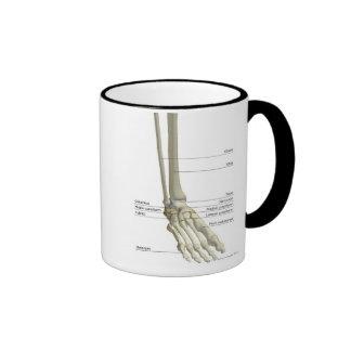 Bones of the Foot 6 Ringer Coffee Mug