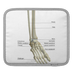 Bones of the Foot 6 Sleeve For iPads at Zazzle