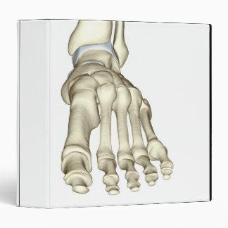 Bones of the Foot 8 3 Ring Binder
