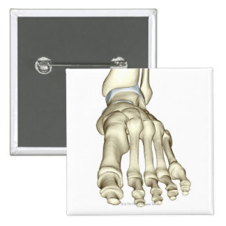 Bones of the Foot 8 2 Inch Square Button