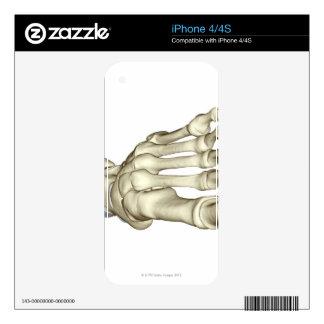 Bones of the Foot 8 iPhone 4S Decals