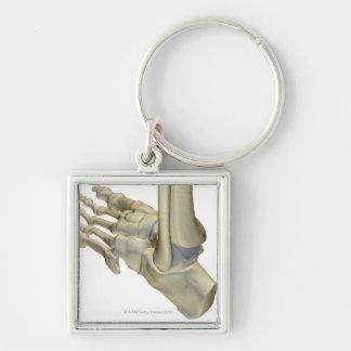 Bones of the Foot Keychain