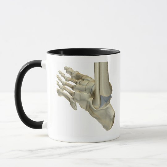 Bones of the Foot Mug