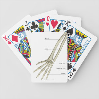 Bones of the Forearm Bicycle Playing Cards