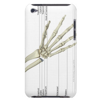Bones of the Hand iPod Case-Mate Cases