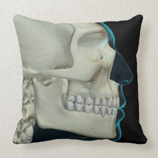 Bones of the Head and Face 2 Throw Pillow