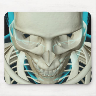 Bones of the Head and Face Mouse Pad
