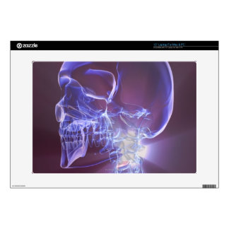 """Bones of the Head and Neck 4 Decal For 15"""" Laptop"""