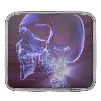 Bones of the Head and Neck 4 iPad Sleeve