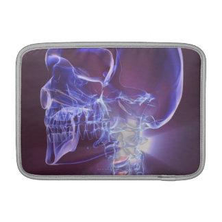 Bones of the Head and Neck 4 MacBook Sleeve