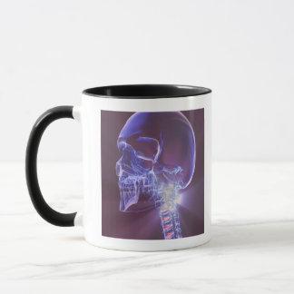 Bones of the Head and Neck 4 Mug