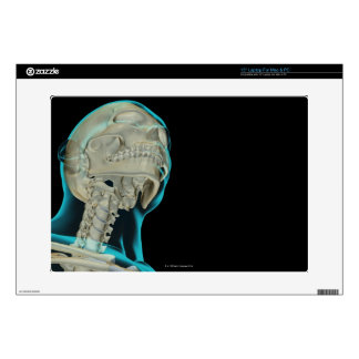 """Bones of the Head and Neck 5 15"""" Laptop Skins"""