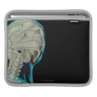 Bones of the Head and Neck 5 iPad Sleeves