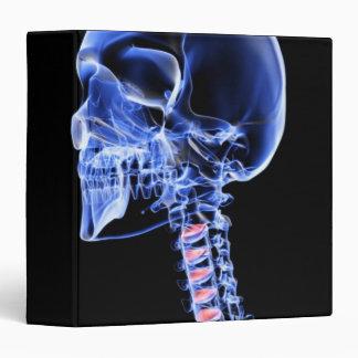 Bones of the Head and Neck 7 Binder
