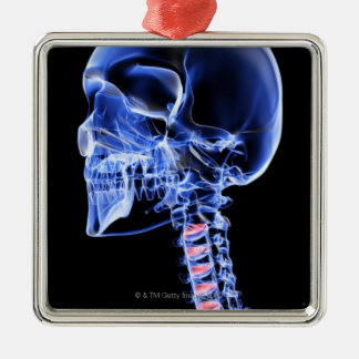 Bones of the Head and Neck 7 Christmas Ornament