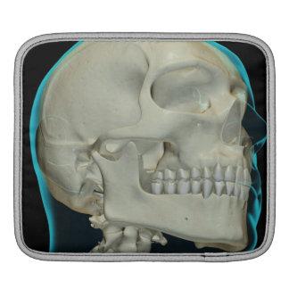 Bones of the Head and Neck 8 iPad Sleeve