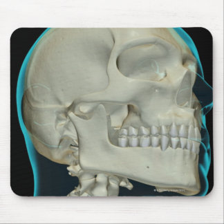 Bones of the Head and Neck 8 Mouse Pad