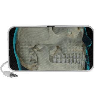 Bones of the Head and Neck 8 iPhone Speakers