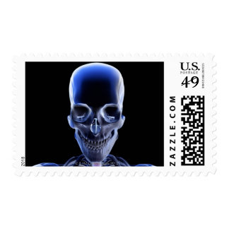 Bones of the Head and Neck 9 Postage Stamp