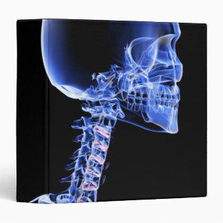 Bones of the Head and Neck Vinyl Binders
