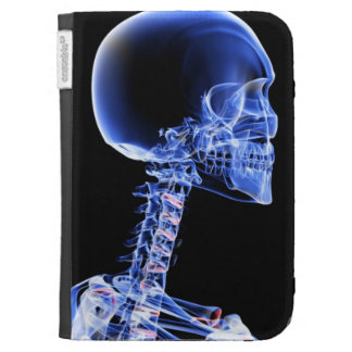 Bones of the Head and Neck Kindle Keyboard Cases