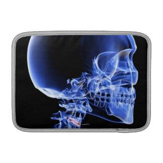 Bones of the Head and Neck MacBook Sleeves