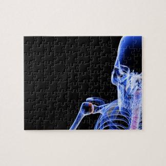 Bones of the Head Jigsaw Puzzle