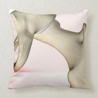 Bones of the Hip 2 Throw Pillows