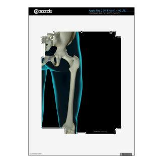 Bones of the Hip 3 Decals For iPad 3