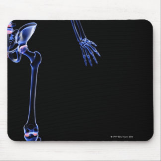 Bones of the Hip Mouse Pad