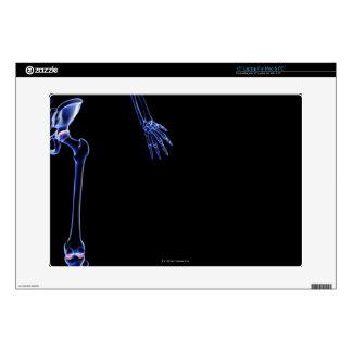 Bones of the Hip Skins For Laptops