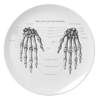 Bones of the Human Hand Melamine Plate