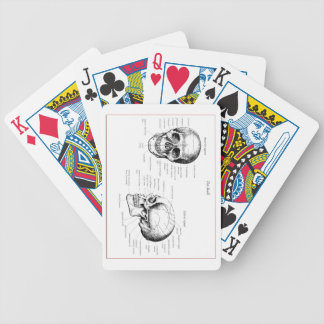 Bones of the human skull bicycle playing cards