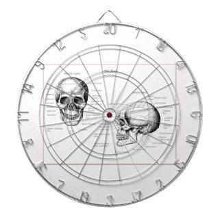 Bones of the human skull dartboard with darts